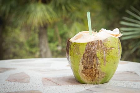 Drinking Fresh Coconut Water